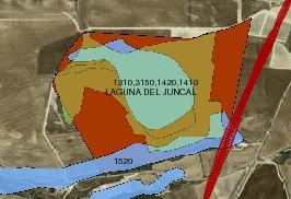Afecciones a la Laguna del Juncal y al hábitat 1520